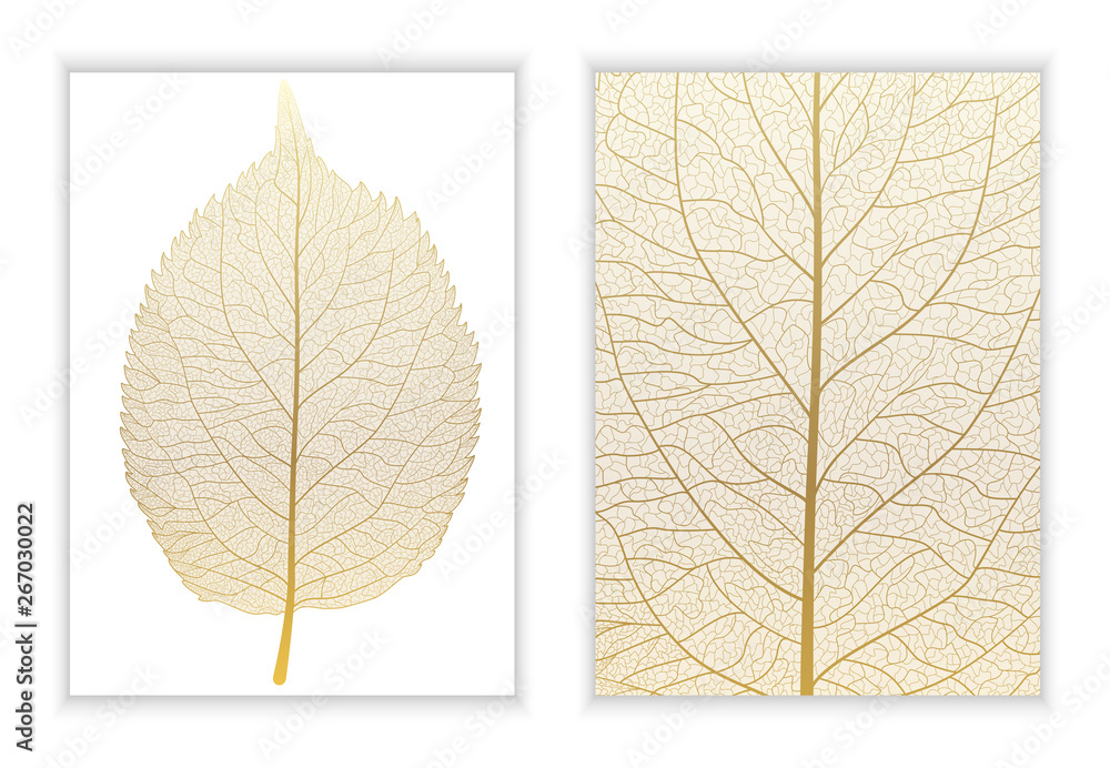 Fototapeta Beautiful background texture leaf  with leaves and space for text. Vector illustration. EPS 10.
