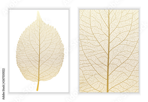 Fototapeta Beautiful background texture leaf  with leaves and space for text. Vector illustration. EPS 10. obraz