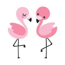 Cute Baby Boy And Girl Flamingo Vector Illustration. Tropical Flamingo Couple Vector.