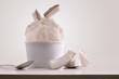 Leinwandbild Motiv Composition of coconut ice cream ball in paper cup
