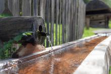Alter Wassertrog Mit Brunnen