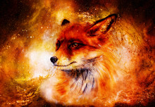 Painting Of Wild Fox On Paper. In Cosmic Space.