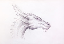 Drawing Of Dragon Head On Pape...