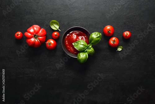 Fototapeta Tomato sauce or ketchup concept obraz