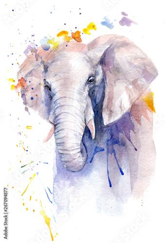 akwarela rysunek zwierzęcia - słonia w kwiatach