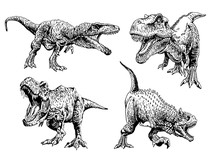 Graphical Set Of Dinosaurs Isolated On White , Vector Tyrannosauruses