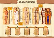 Mummy Creation Cartoon Vector ...