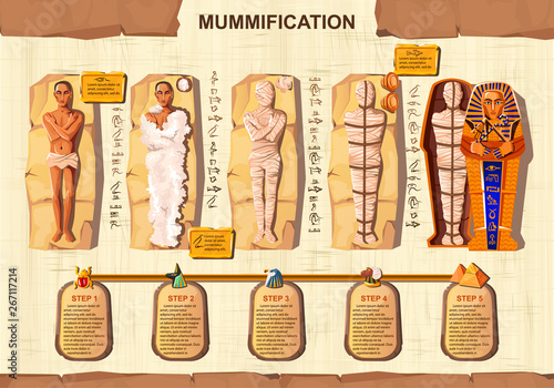 Fotografie, Obraz Mummy creation cartoon vector infographic illustration