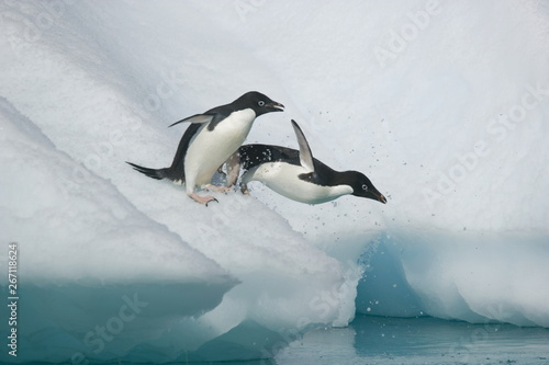 Spoed Fotobehang Pinguin Adelie penguins leap from an iceberg in Antarctica