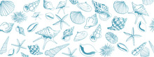 Vector Seashell Banner