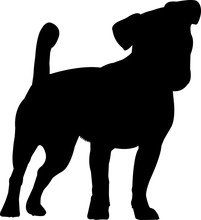 Jack Russell Terrier 7 Isolated Vector Silhouette