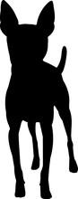 Toy Fox Terrier 5 Isolated Vec...