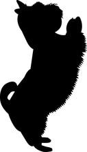 Westie Dog 1 Isolated Vector S...