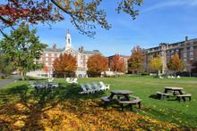 Harvard Campus In The Fall