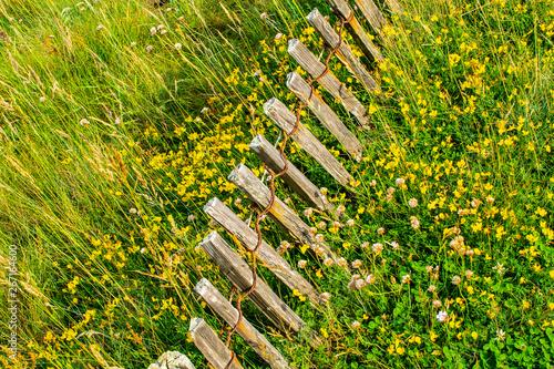Papiers peints Jaune clôture en bois dans le pré parmi les fleurs