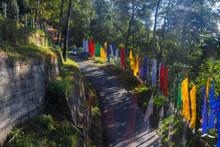 Prayer Flags , Sikkim, India