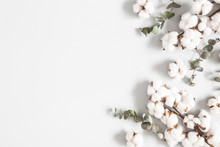Flowers Composition. Eucalyptus Leaves And Cotton Flowers On Pastel Gray Background. Flat Lay, Top View, Copy Space