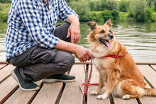 Man And His Dog Sitting On Wooden Pier. Holiday With An Animal Concept.