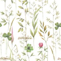 Fototapeta Do łazienki Hand painted watercolor illustration. Seamless pattern with different herb.