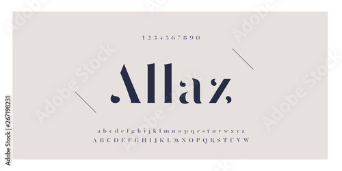 Fototapeta Elegant awesome alphabet letters font and number