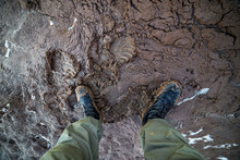 Legs In Army Boots In Wet Mud Closeup Top-down Vew With Selective Focus At Daylight