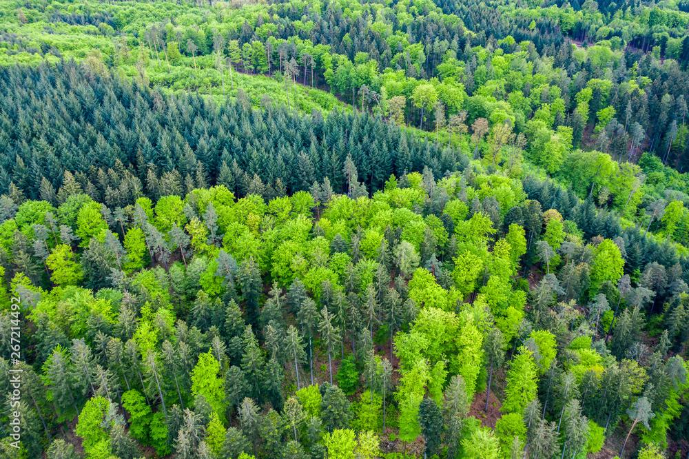 Fototapety, obrazy: Luftaufnahme Schwäbischer Wald, Rems Murr Kreis, Baden Württemberg, Deutschland