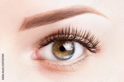Fotografia Female eye with long eyelashes