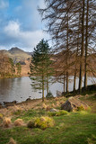 Beautiful vibrant sunrise landscape image of Blea Tarn in UK Lake District with Langdales Range in background - 267226491