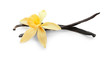 Leinwandbild Motiv Aromatic vanilla sticks and flower on white background