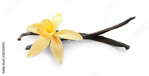 Fotografía Aromatic vanilla sticks and flower on white background