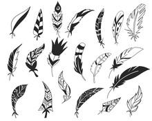 Rustic Decorative Feathers. Ha...