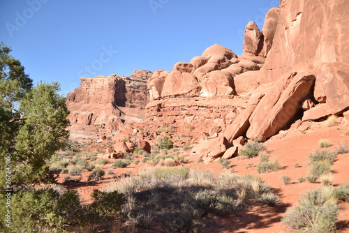 Canyonlands National Park, Utah. U.S.A. Beautiful pinyon and juniper pine and red sandstone moutains