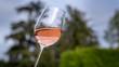 Leinwanddruck Bild - Verre de vin rosé