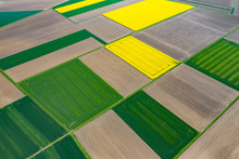 Aerial View Of Summer Fields. ...