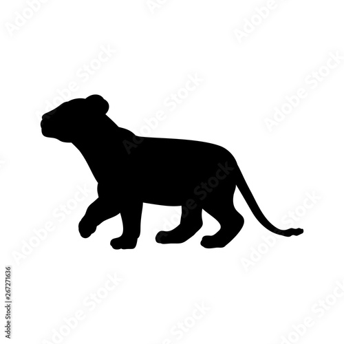 Lion cub predator black silhouette animal. Vector Illustrator. Canvas Print