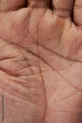 Man palm hand skin texture Wall mural