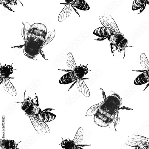 Canvas Print Seamless pattern of hand drawn sketch style bumblebees and bees isolated on white background