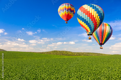 Hot Air Balloons Over Lush Green Landscape and Blue Sky - 267301268