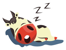 Cow Is Sleeping, Illustration,...