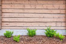 Peeled Log Wall Exterior And B...