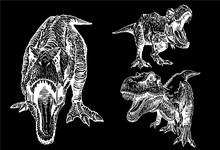 Graphical Set Of Tyrannosaurus...