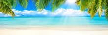 Strand Panorama Mit Palmen Und...