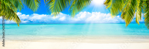 Cadres-photo bureau Montagne Strand Panorama mit Palmen und Sonne als Hintergrund