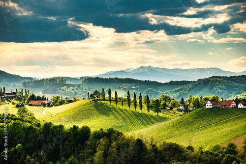 Photo sur Aluminium Vignoble South styria vineyards landscape, near Gamlitz, Austria, Eckberg, Europe. Grape hills view from wine road in spring. Tourist destination, travel spot.
