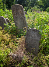 Abandoned Jewish Cemetery In The Carpathians