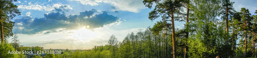 Foto auf Leinwand Blau panoramic view forest and blue sky