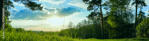 Foto op Plexiglas Weide, Moeras panoramic view forest and blue sky