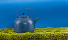Blue Cast Iron Teapot On The G...