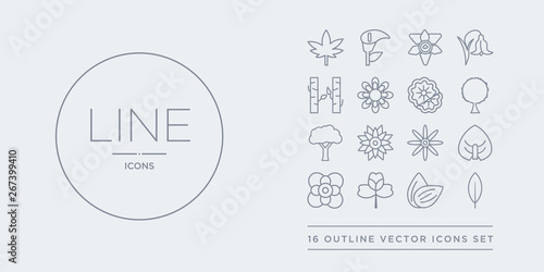 16 line vector icons set such as acicular, almond, alstroemeria, anemone, anthurium contains aster, astrantia, baobab, beech Canvas Print
