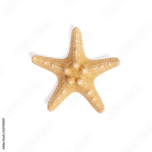 Fotografia Isolated starfish on white background.Top view